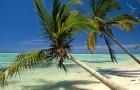 Забронировать Туры в Доминикану