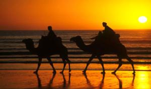 Агадир Марокко курорты, горячие туры в Марокко из Москвы, отдых в Марокко отзывы