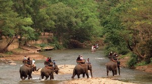 Горящие туры в Тайланд Паттайя, отдых в Тайланде цены, Тайланд туры цены, купить тур в Тайланд
