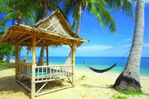 Туты в Таиланд